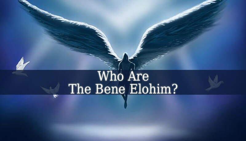 Who Are the Bene Elohim?